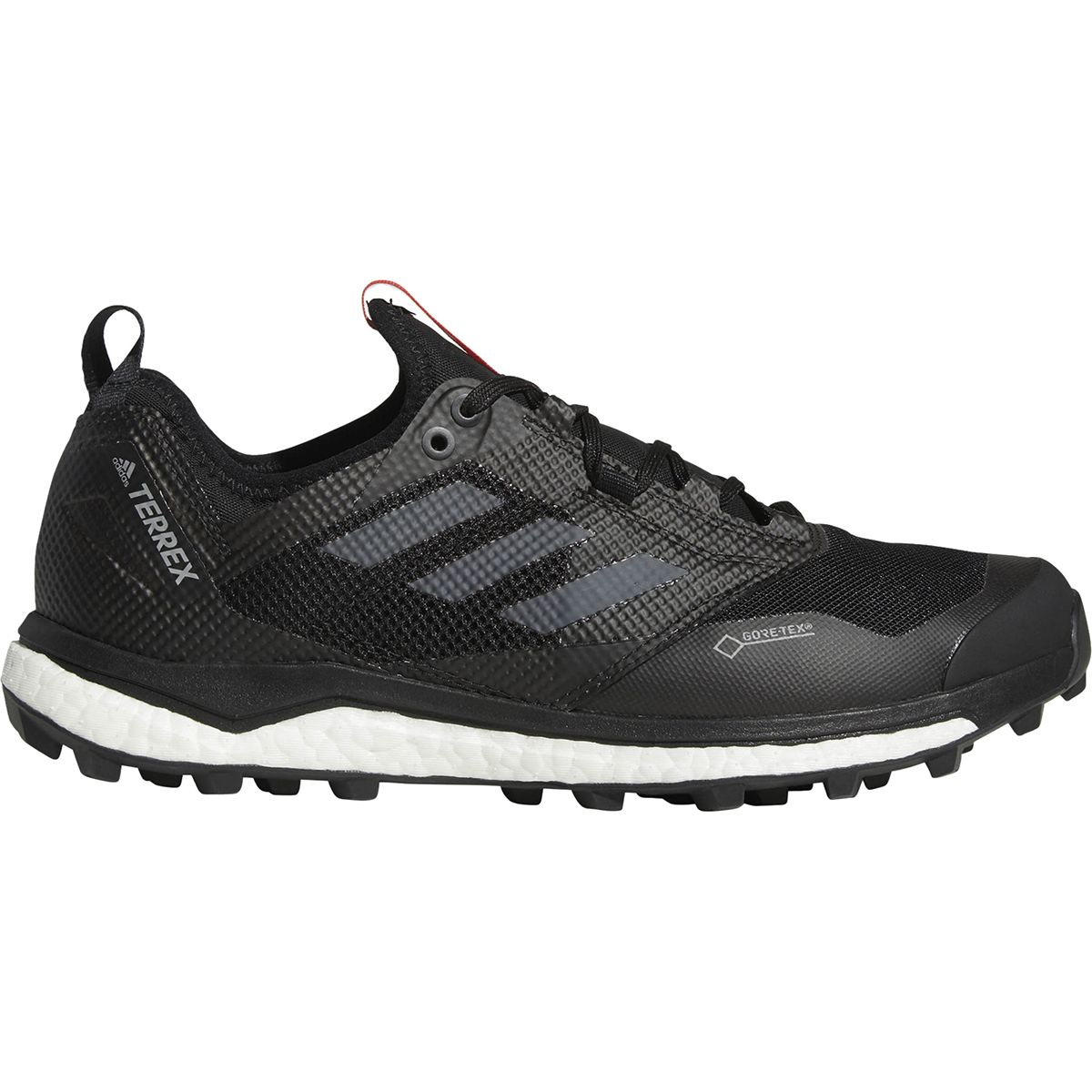 Adidas Outdoor Terrex Agravic Boost Xt Gtx Shoe Mens