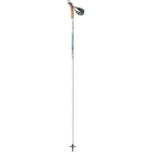 BCX Mountain Ski Pole
