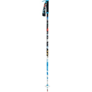 Pollard's Paint Brush Ski Pole