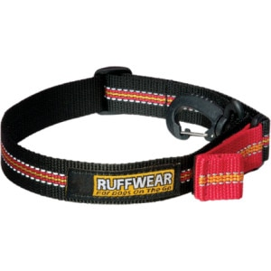 Quick Draw Dog Leash