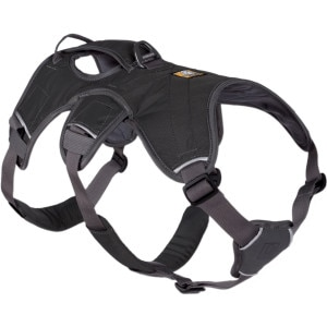 Web Master Dog Harness