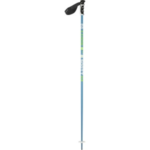 Team Issue Ski Pole