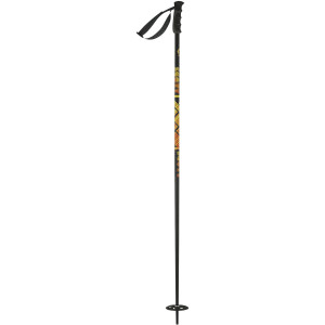 Remit Ski Pole