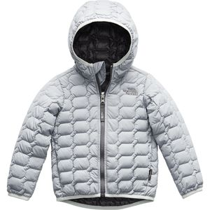 ThermoBall Hooded Insulated Jacket - Toddler Boys'