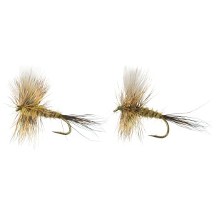 Colorado Green Drake - 2-Pack