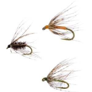 Nemes Soft Hackle - 6-Pack