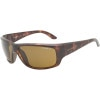 Cheat Sheet Sunglasses - Polarized