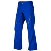 AK 2L Stagger Gore-Tex Pant - Men's