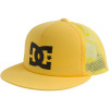 DC Dweeter Trucker Hat - Boys'