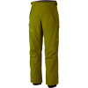 Returnia Insulated Pant - Men's