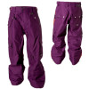 Oakley Alps Pant - Men's
