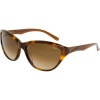 Cypress Sunglasses