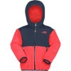 Denali Hooded Fleece Jacket - Toddler Boys'